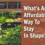 What's An Affordable Way To Stay In Shape?